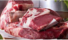 Carne di bovino
