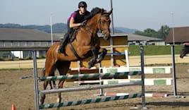 10 lezioni su pony
