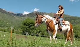5 lezioni a cavallo