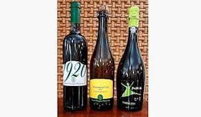 3 bottiglie vini bianchi