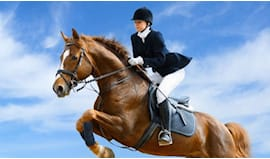 Lezione equitazione