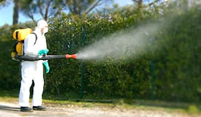 Disinfestazione zanzare