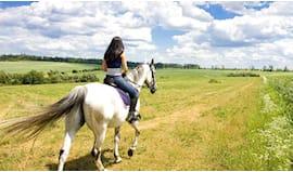 1 ora a cavallo omaggio