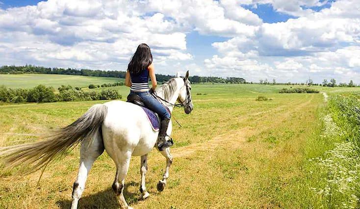 1-ora-a-cavallo-omaggio_152434