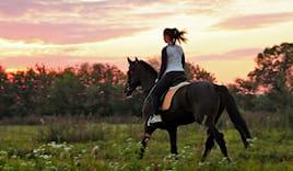 Omaggio 3lez. equitazione