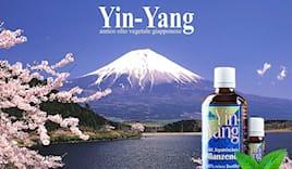 Yin yang olio vegetale