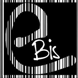Ebis informatica