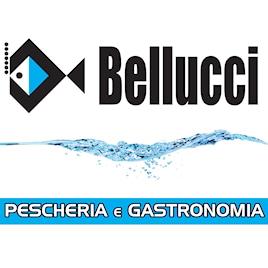 Bellucci Pescheria e Gastronomia