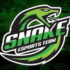 Snake Garage S.R.L