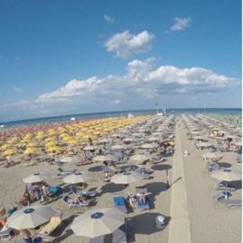 Consorzio Rimini D'amare