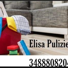 Elisa pulizie